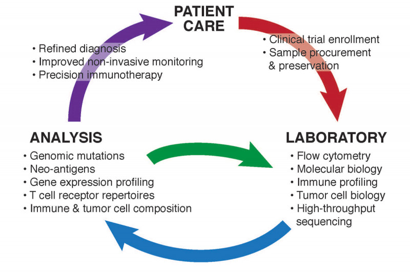 Figure 2: Flow of patient care with precision oncology