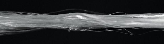 Silk strands. Source.